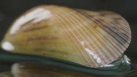 Watch Mussels. Episode 18 of Season 1.
